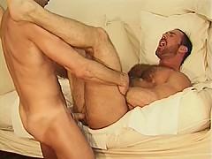 Bear takes a ramming for hot jizz