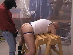 Chubby bear bent over and abused