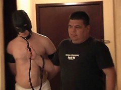 Hairy slave sucks dick and is spanked